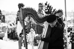 musician-203479_1920.jpg